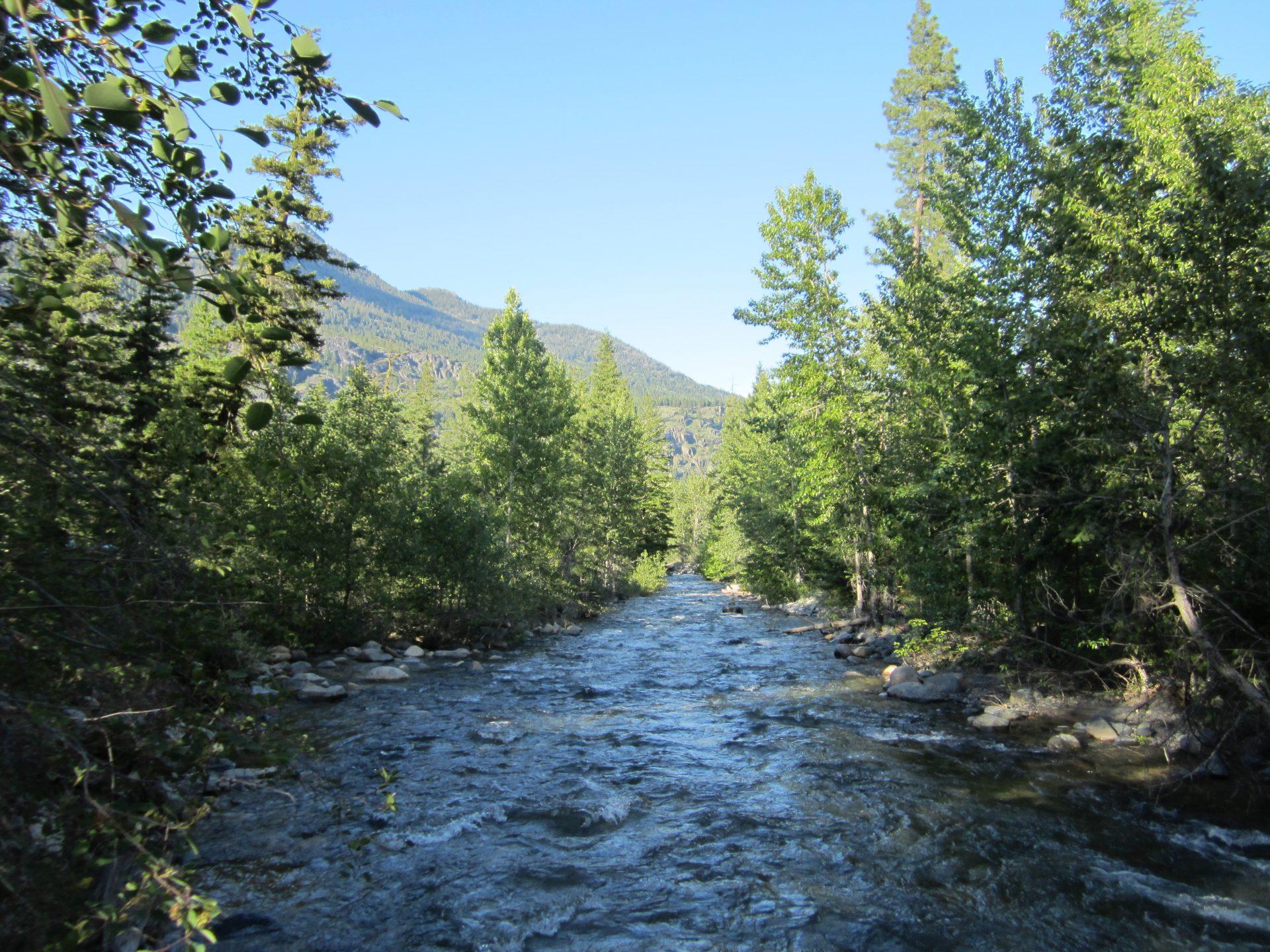 Early Winters Creek WA