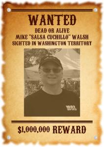 Walsh 2 300 424